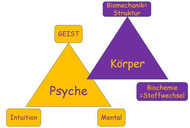 """Körper & Psyche"" Kinesiologie & Coaching Andrea Menschick Renningen"